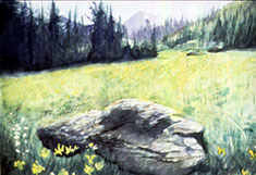 Color Illustration Thumbnail 03